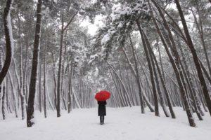 individual in winter scene, snow